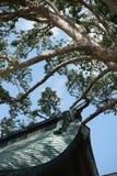 Tetti ed architettura antica del giapponese degli alberi Immagine Stock