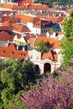 Tetti rossi di Praga Immagini Stock