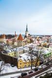Tetti a Tallinn Immagine Stock Libera da Diritti