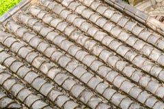 Tetto cinese della pagoda. fondo Fotografia Stock Libera da Diritti