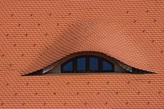 Tetto con la finestra Fotografia Stock Libera da Diritti