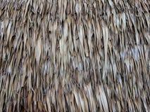 Tetto d'annata fatto da foglia di palma asciutta fotografia stock libera da diritti