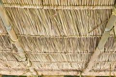 Tetto dell'erba del vetiver. Fotografia Stock Libera da Diritti