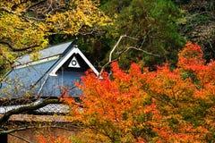 Tetto della Camera contro i colori del fogliame di autunno Immagine Stock Libera da Diritti
