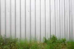 Tetto della lamina di metallo o tetto della lamiera di acciaio con erba verde e la pianta fotografia stock libera da diritti