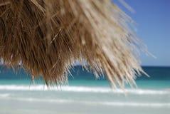 Tetto della noce di cocco sulla spiaggia   immagine stock