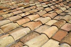 Tetto di mattonelle di Roma Immagine Stock