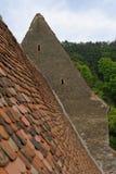 Tetto di mattonelle rosse, giumenta di Copsa, Romania Fotografia Stock