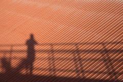Tetto ed ombra umana Fotografia Stock Libera da Diritti