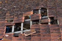 Tetto fatto delle mattonelle di terracotta e dei fasci di legno nocivi seriamente Immagine Stock Libera da Diritti
