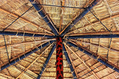 Tetto Thatched. Fotografie Stock