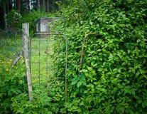 Tettoia abbandonata con il giardino e la rete fissa invasa Immagini Stock Libere da Diritti