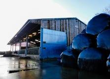 Tettoia dell'azienda agricola di bestiame, via verde, Chorleywood, Hertfordshire fotografia stock libera da diritti