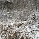 Tettoia della neve Fotografia Stock Libera da Diritti