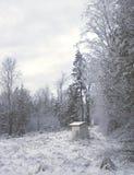 Tettoia di inverno Fotografie Stock Libere da Diritti