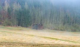 Tettoia di legno nella foschia di mattina Fotografia Stock