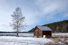 Tettoia e betulla di rosso nel paesaggio invernale Fotografie Stock Libere da Diritti