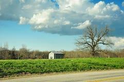 Tettoia in pascolo sotto cielo blu nuvoloso Fotografia Stock Libera da Diritti