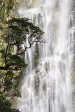 Teufel Punchbowl-Wasserfälle Lizenzfreies Stockfoto