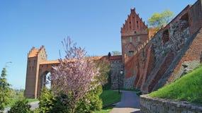 Teutonic beställningsslott i kwidzyn Royaltyfria Foton