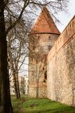 Teutonic castle and red brick tower in the park in the autumn season. A high tower with a sloping red brick roof on a hill. Stock Photography
