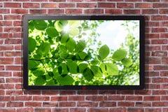 A tevê de Smart com verde natural folheia o papel de parede - parede de tijolo no fundo fotos de stock