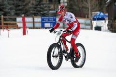 teva χιονιού κριτηρίου ποδηλάτων Στοκ φωτογραφία με δικαίωμα ελεύθερης χρήσης