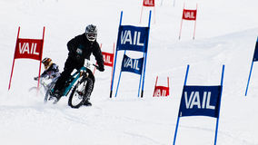 Teva Dual Slalom Bike Royalty Free Stock Image