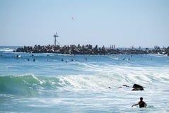 Teveel surfers Royalty-vrije Stock Fotografie