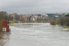 tevere потока Стоковая Фотография RF