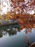 Tevere, Roma. Lungo Tevere autunno royalty free stock photo