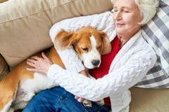 Tevreden eigenaarslaap met hond royalty-vrije stock fotografie