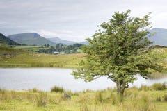 Tewet Tarn Lake, Keswick; Lake District Royalty Free Stock Photo