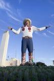 Tex grande (nuevo 2013) Fotografía de archivo
