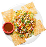 Tex-mex appetizer on plate. Isolated on white background royalty free stock photo