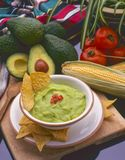 Tex Mex Food. Guacamole and nachos. Tex Mex Food. Guacamole served with nachos chips Stock Images