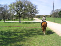 Texan Cowboy. Cowboy rides horse in central Texas Stock Photography