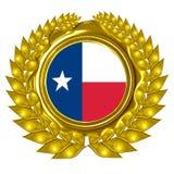 Texanflagge lizenzfreie abbildung