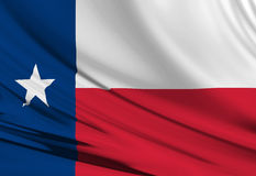 Texanflagge vektor abbildung