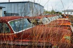 Texarkana auto lineup de vanliga misstänkterna 04 royaltyfri foto