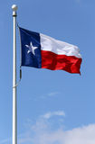 флаг texas Стоковые Фотографии RF