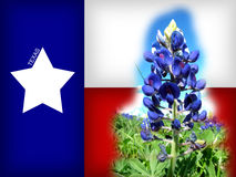 TEXAS. Computer generated flag with Blue Bonnet (State Flower Stock Illustration