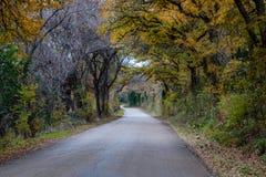 Texas Back Roads Stock Photo