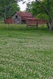 Texas Barn Imagen de archivo