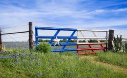 Texas bluebonnets längs ett staket i vår Fotografering för Bildbyråer