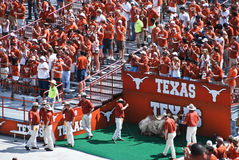 Texas college football fans Royalty Free Stock Photography