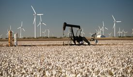 Texas Cotton Filed Textile Agriculture Oil Industry PumpJack. Oil production in a mature cotton field stock photo