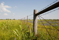Texas countryside, USA Royalty Free Stock Photography