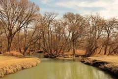 Texas Creek Fotografia de Stock Royalty Free