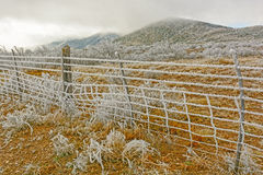 Texas Desert in a Winter Ice Storm Stock Images